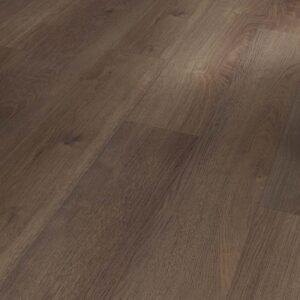 Dąb Castell dymiony struktura drewna 1730680
